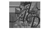 Cary Charlin, DDS - AACD Logo